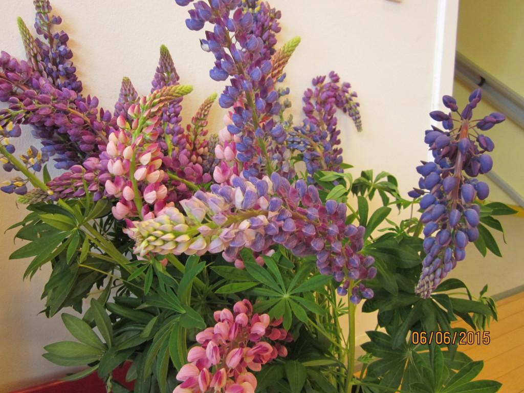 Udsmykning blomsterIMG_5290